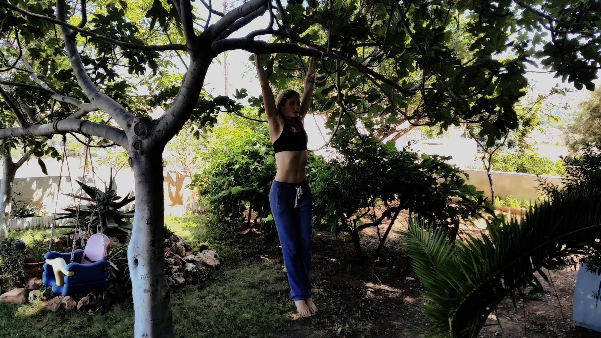 trening na drzewie-kalistenika